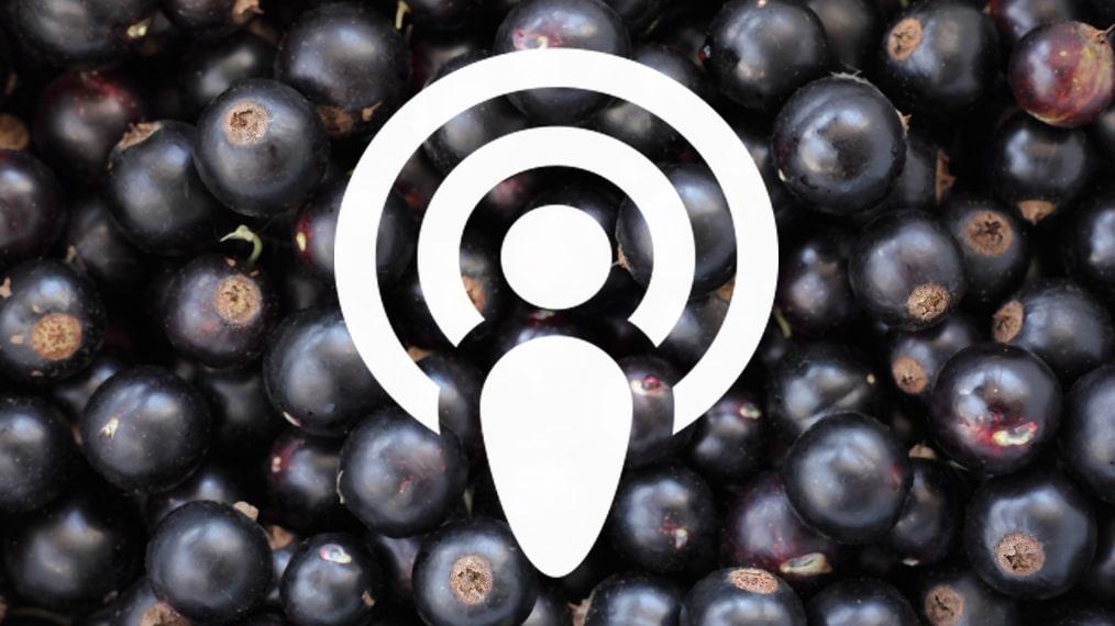 Vill du lära mer om druvan Cabernet Sauvignon och viner gjorda på dessa druvor – lyssna på vår podcast med Johan Franco Cereceda och Michael Anderquim.