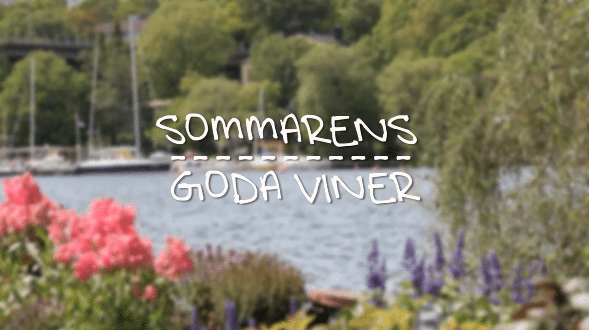 Sommarens Goda Viner – Episod 4: Röda viner