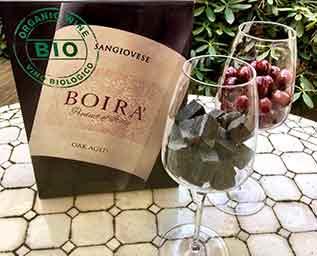 Biologisk mångfald i vingården