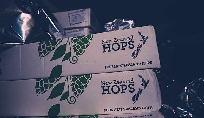 NKB-hops-686