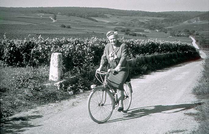 Lilly-Bollinger-cykel-686