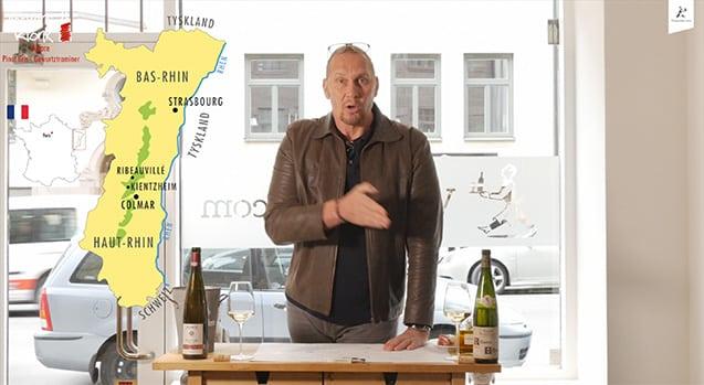 Pinot Gris vs Gewurtztraminer