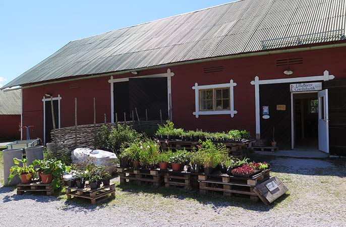 Lilla-Bjers-Gardsbutik-686