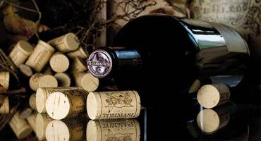 Veronas viner visar vägen