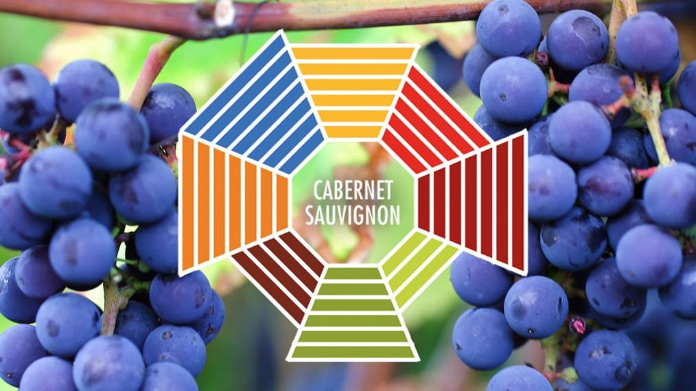 Lär dig mer om Cabernet Sauvignon