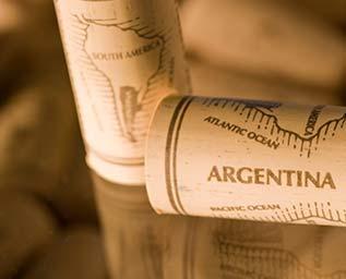 Fem bästa viner från Argentina