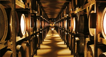 Storslagen miljö för gröna viner