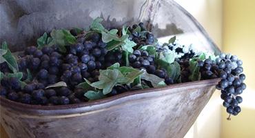 Ikondruva visade vägen för kaliforniskt vin