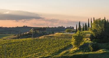 Fem bra bubbel från Italien