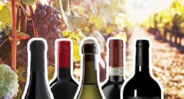 5 italienska viner våren 2019 – under 100 ..