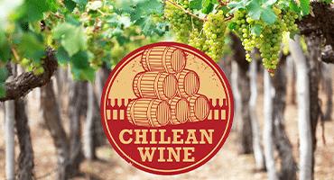 Fem okända fakta om chilenska viner