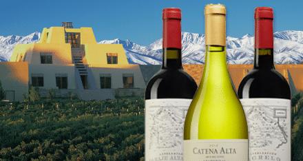 Världens mest beundrade vin – från Argentina